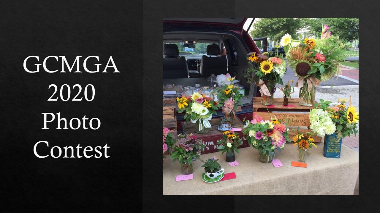 2020 GCMGA Photo Contest