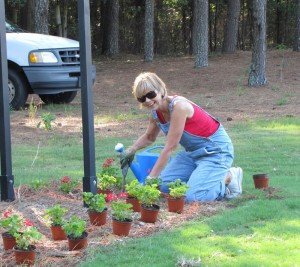 Cyndy Weber planting the right entrance