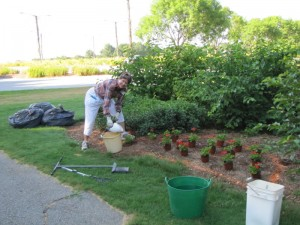 Mary Ann Maher planting the left side of the entrance gate