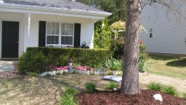 Well Done Master Gardeners_Front Yard