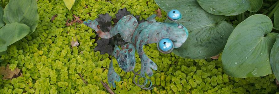 Slider-frog