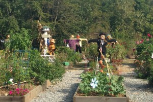 2015 GT Community Garden