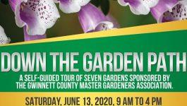 Garden Tour June 2020